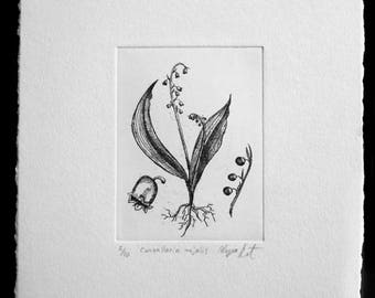 Lily of the Valley Original Fine Art Etching Print (Editioned Botanical Illustration)