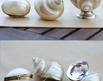 Pearl Seashell Curiosities - bronze box, napking ring - sterling silver salt and pepper shaker - Vintage Early Century - Home Decor