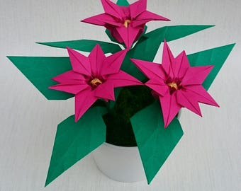 Mothers day gift, eco friendly gift, floral arrangement, poinsettia, mother in law gift, christmas present flowers, christmas gift pink