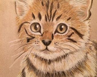 Art Print -Kitten - Wall Decor