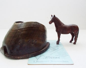 Equestrian Hoof  Horse Foot with Horse Shoe Taxidermy Vide Poche