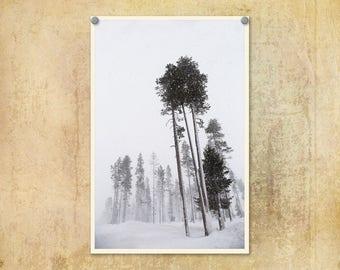 Winter Photography | Snow Photo  | Mt. Bachelor | Travel Print | Forest Photograph | Cascade Mountains | Wanderlust | Bend Oregon