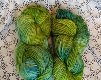 Yarn, green, aqua, blue, superwash, wool, worsted, reef
