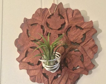 Wood & Wire- Air Plant Holder