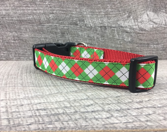 "The Kastner | Designer 1"" Width Dog Collar 