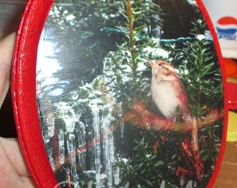 Bird in a Icy Bush Plaque