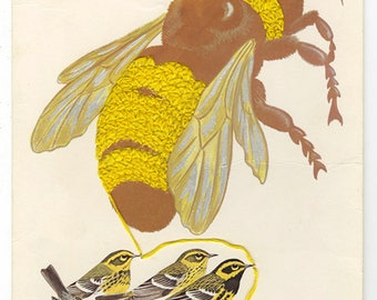 The bees' knees. Original collage by Vivienne Strauss.