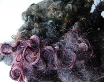 Wensleydale dyed locks Green and plum over natural charcoal curls