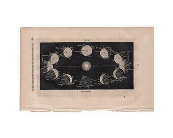 c. 1859 THE SEASONS - original antique astronomy print - sun's apparent motion in declination - zodiac constellations - earth orbit print