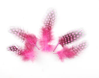 hot pink Guinea fowl feathers 10 x 5 to 13cm (58E)