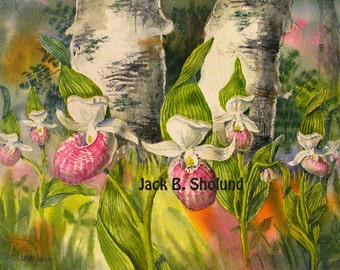 Pink Showy Lady Slippers Flowers Watercolor Notecard