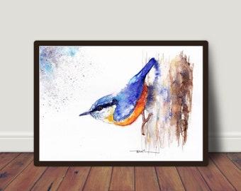 Nuthatch ,Original Watercolour Painting ,Illustration,Nursery,Print ,Card, Gift, Frame, Art, Wildlife, Bird, UK Free Postage