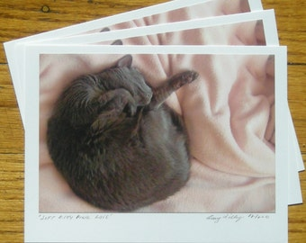 Soft Kitty Pink Love, Photo Art Card