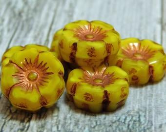 6pcs - 12mm - Flower Beads - Hawaiian Flowers - Czech Picasso Beads - Czech Flowers - Yellow Flower - Czech Glass Beads - (5054)