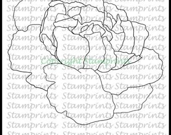 January Flower of the Month - Carnation #1 (TLS-1712) Digital Stamp. Cardmaking.Scrapbooking.MixedMedia.