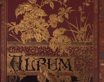 Antique scrap book cover