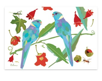 Three Ringed Neck Parrot Blank Cards FREE Shipping Australia Wide