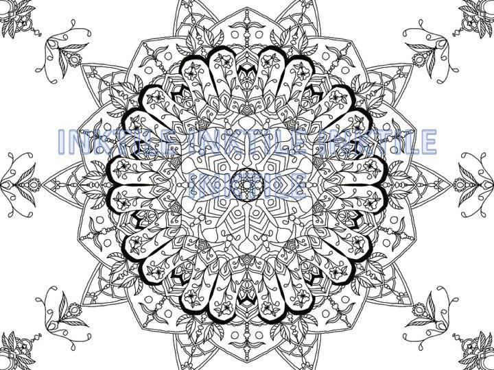 Mandala Coloring Page Digital Download Adult Coloring Book
