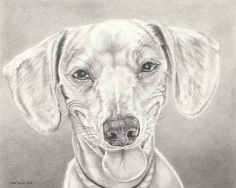 Custom animal Portrait au Graphite - 8 x 10