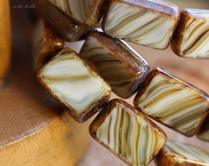 WILD OATS .. 15 Picasso Czech Glass Rectangle Beads 12x8.5mm (B1041-st)