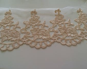 Embroidered lace tulle 13.5 cm wide dark beige
