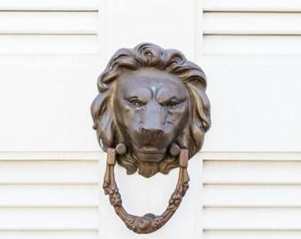 Lion Door Knocker in Charleston, SC Print