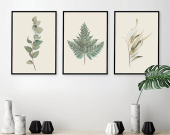 Digital Downloads, Botanical poster printable, Botanical print set, Botanical prints, Set of 3 prints, Australian botanical prints, Posters
