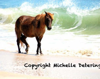 Wild Horse with Ocean -  Horse Photography, Horse Art, Wild Horse Art, Horse Decor, Horse, Assateague Horse, Wild Horse Photography, Equine