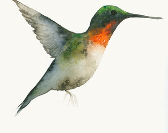 Watercolour Hummingbird Art Fine Art Print from Original Watercolor
