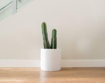 Planter | Pot | Cylinder | Indoor & Outdoor Modern Lightweight Hand Painted Planters | Large Planter | Matte White | Minimalist | Plant Pot