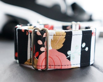 Martingale collar, Greyhound Collar, Galgo Collar, Saluki Collar, Sighthound Collar, Modern Dog Collar, Abstract Collar, Cotton Dog Collar