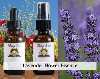 Lavender Flower Essence, 1 oz Dropper or Spray for Emotional Balance, Soothing Sensitivity and Nervousness