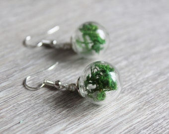 Glass earrings with MOSS