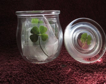 Mother's Day Jar of Luck – 24 Real 4Leaf Clovers (24 genuine 4L Clovers w/Jar)