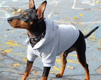 Grey Dog Hoodie, Dog Hoodie, Dog Sweatshirt, Grey Dog Sweatshirt, Plain Dog Hoodie, Rocky Dog Hoodie, Cool Dog Hoodie,