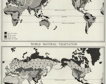 1940 Antique WORLD NATURAL VEGETATION animals Maps of the World 1900s atlas regions print Map