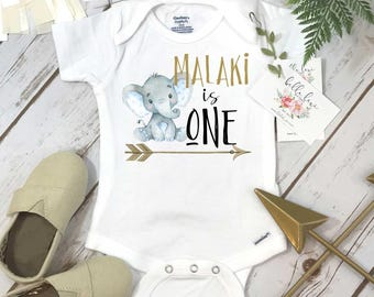 First Birthday, Elephant Theme, Birthday Shirt, 1st Birthday, Personalized Birthday Shirt, Boy Birthday, Birthday Onesie®, Best Seller baby