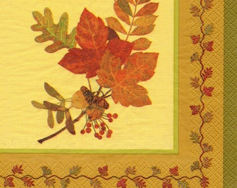 FALL FOLIAGE 201 1 lunch size paper towel