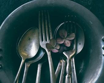 Vintage Cutlery 2 - kitchen wall art, vintage still life photography, black and silver wall art, floral botanical art print, moody black art
