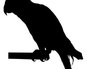 African Grey Parrot Die-Cut Decal Car Window Wall Bumper Phone Laptop