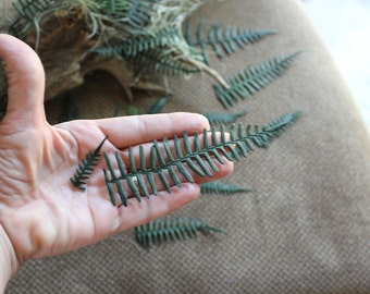 Preserved Ferns-REAL Preserved ferns-20+ Green ferns in assorted sizes-invitations-Dried Floral-Boutonnieres