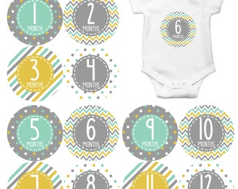 Monthly Stickers Monthly Baby Stickers Baby Month Milestone Stickers Baby Month Stickers Month to Month Bodysuit Stickers Shower Gift  357