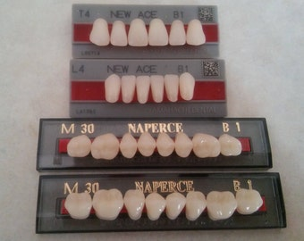 Upper and Lower False Teeth, Shade B1