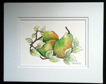 Three Pears - Original Watercolor and Pen and Ink Painting, Fruit, Fruit Art, Fruit painting, Pear, Wall Art, Kitchen Art, Art Gift