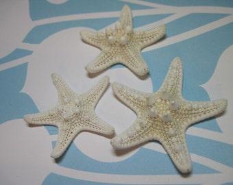 3 Mini Starfish - Knobby White Starfish Sea Stars - Approx  2 to 2 1/4 inches