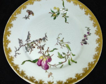 Rare Antique Haviland Limoges H & L Hand Painted floral pattern collectible Plate 1800s with Gold Trim 8.5 inch