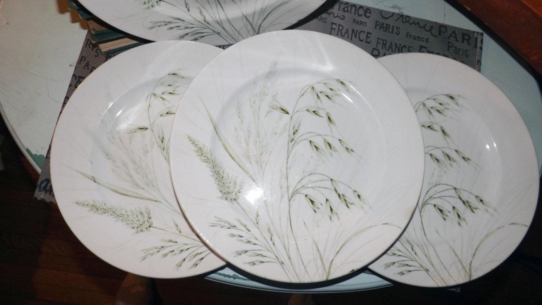 Vintage (1970s) English Ironstone Tableware Wild Oats pattern dinner ...