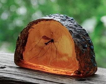 Mosquito in Amber Slice life size Replica