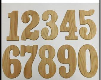 "Wood Numbers, ""Block"" Font - 8 Inch, Individual Number"