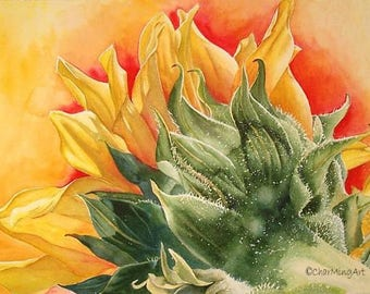 """Fired Up Original sunflower unframed watercolour 18 x 24"""" in vibrant warm yellows and reds"""
